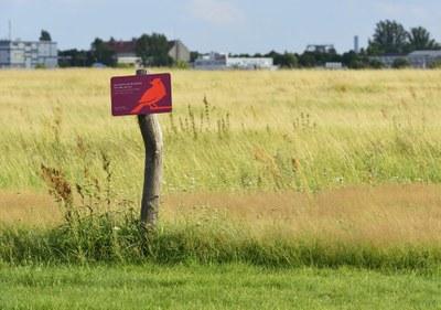 Foto des Vogelschutzgebiets